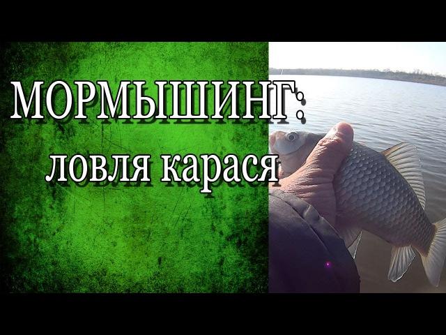 Мормышинг / Ловля карася