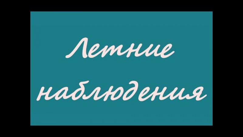Летние наблюдения ☭ Киев - Советская Украина - УССР ☆ Документальный фильм СССР » Freewka.com - Смотреть онлайн в хорощем качестве