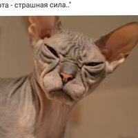 Рисунок профиля (Оксана Галактионова)