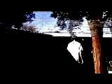 cat soup - trepanation [video]