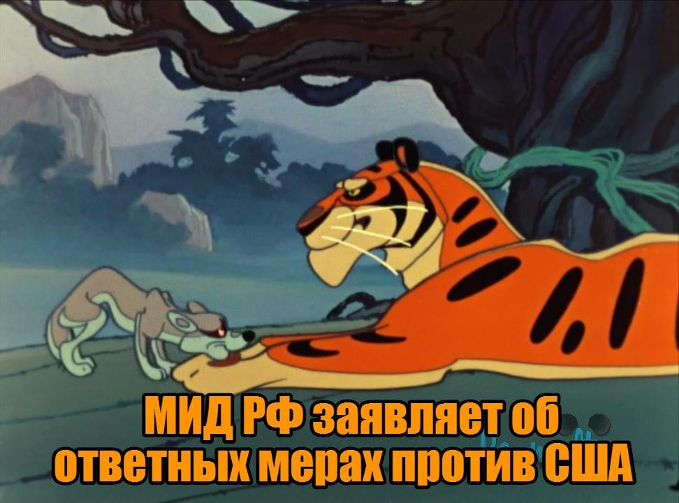 PLFIxiZDWtM.jpg