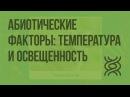 Абиотические факторы температура и освещенность