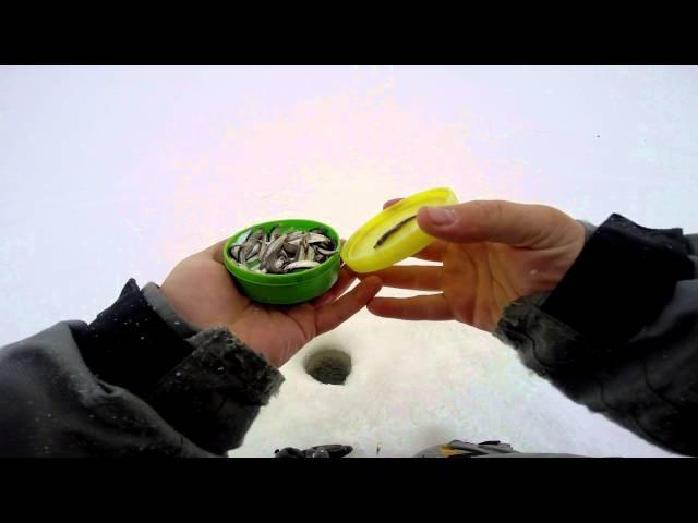 Зимняя рыбалка на Волге Ловля судака и берша на тюльку в Камском устье