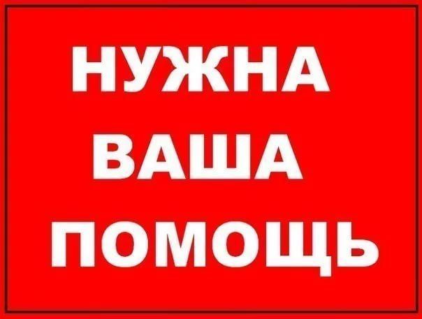 Фото №456239023 со страницы Светланы Тиуновой