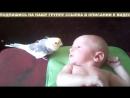 Просто Чудо! Попугай ПОЁТ для малыша