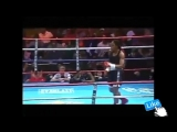 The Most Powerful Female Boxer of all time Ann Wolfe