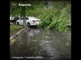 Ураган в Москве 29-05-2017