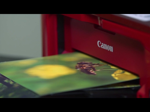 Фотопринтер Canon PIXMA MG3640 обзор