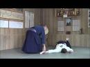 Hakko denshin Ryu shodan Kihon Tachi Waza