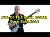 One Of THE Most Useful Bass Exercises - Cycle Of 4ths and Notes On The Neck Combined (L124)
