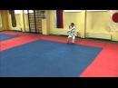 Базовая техника каратэ для новичков клуба Сёгун