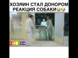 Самое грустное видео в мире😢😭