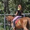 Black Horse stable | лошади в Кременчуге