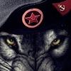 Морская Пехота  77-я ОГБрМП  727-ой ОБМП