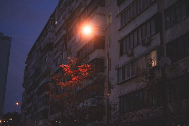 Фото -48393830