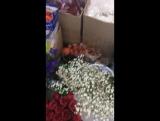 Привоз цветочков :)