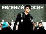 Евгений Осин  -  Птицы   ( Альбом1999 )