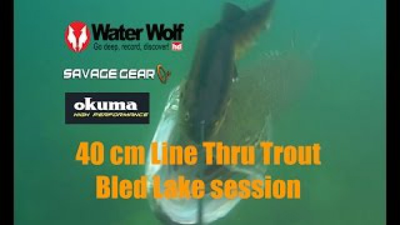 40 cm line thru trout - amazing underwater strikes by Water wolf camera at Bled lake