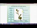 Систематика растений. ОГЭ. ЕГЭ. Биология.