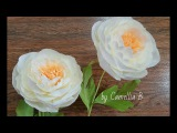 DIY- How to make Paper Peony flowers by crepe paper- Easy H