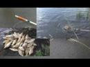 Снасть на летнюю удочку скользящий поплавок кормушка убийца карася.