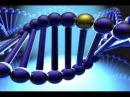 Активация ДНК 2-й Уровень ч.1 Целительная музыка Крайона .wav