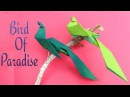 Bird Origami - Paper Bird of Paradise