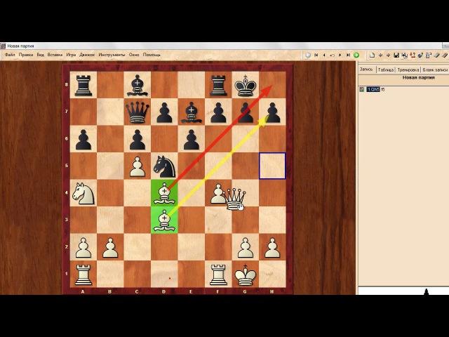 СЕКРЕТ мышления успешных шахматистов.Школа шахмат d4-d5