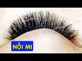 Nối Mi 2 - Volume lash extensions – Rửa mắt trước khi nối mi - KIM NHUNG ETV