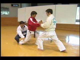 Техника Кумитэ - Seiji Nishimura - Wado Ryu Kumite Technique Seminar - part1