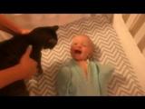 Малыш без ума от своего кота