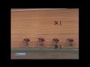 Олимпийские игры в Москве. Велоспорт. Мужчины. Командная гонка преследования на 4000 м 1980