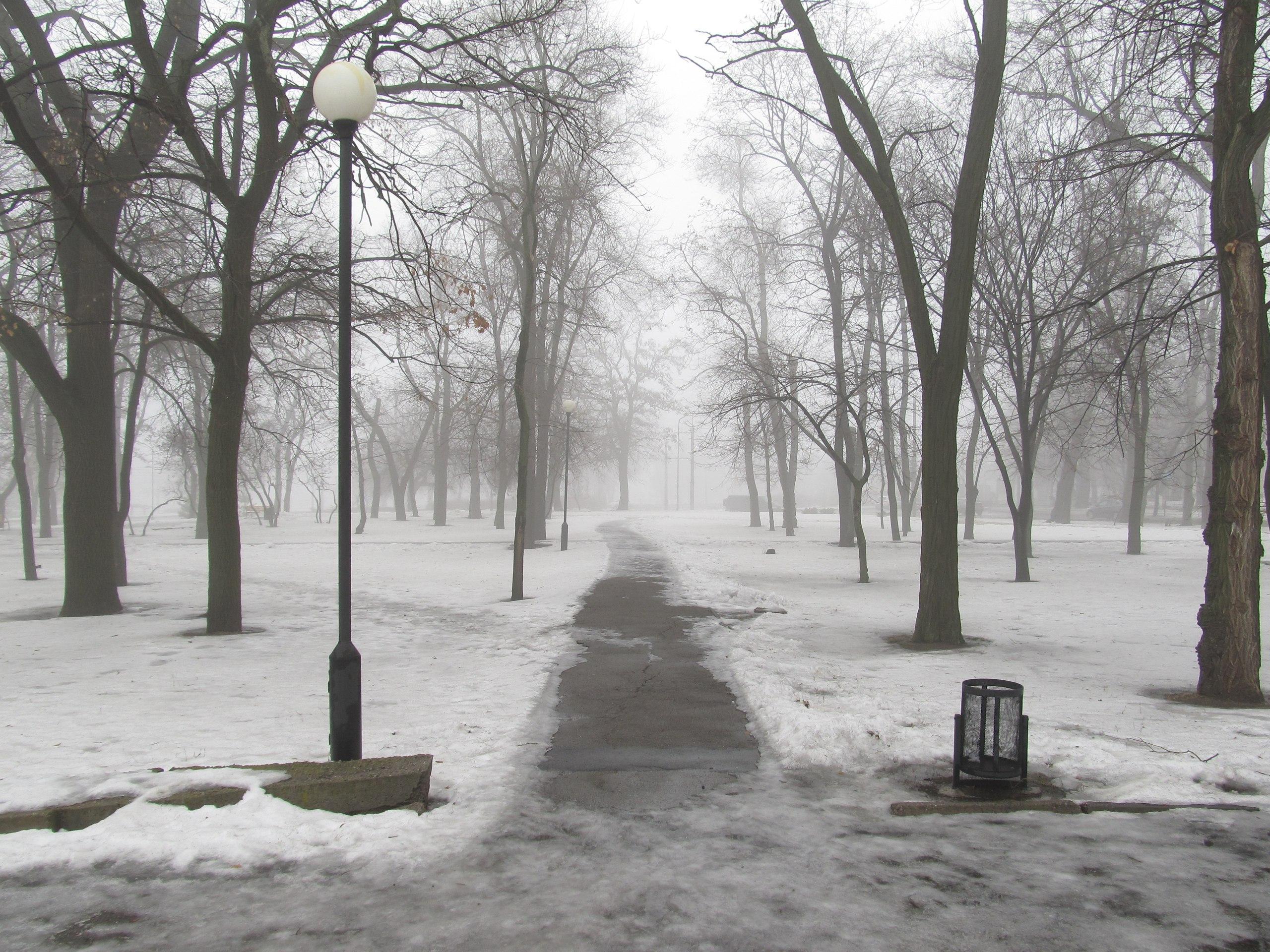 На Запорожье опустился туман (ФОТО)