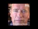 Science et vie : Le message d'Arnold Schwarzenegger après Charlottesville