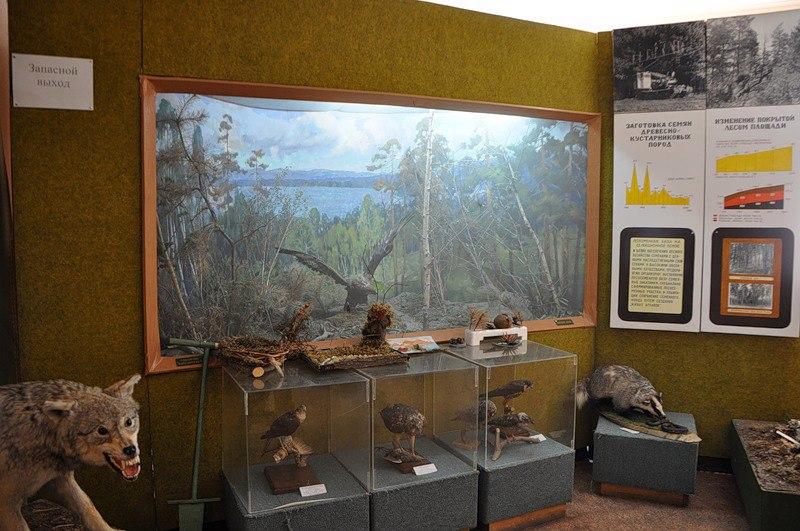 Экспонаты музея (22.12.2016)