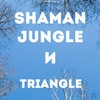 Shaman Jungle и Triangle | 23 марта