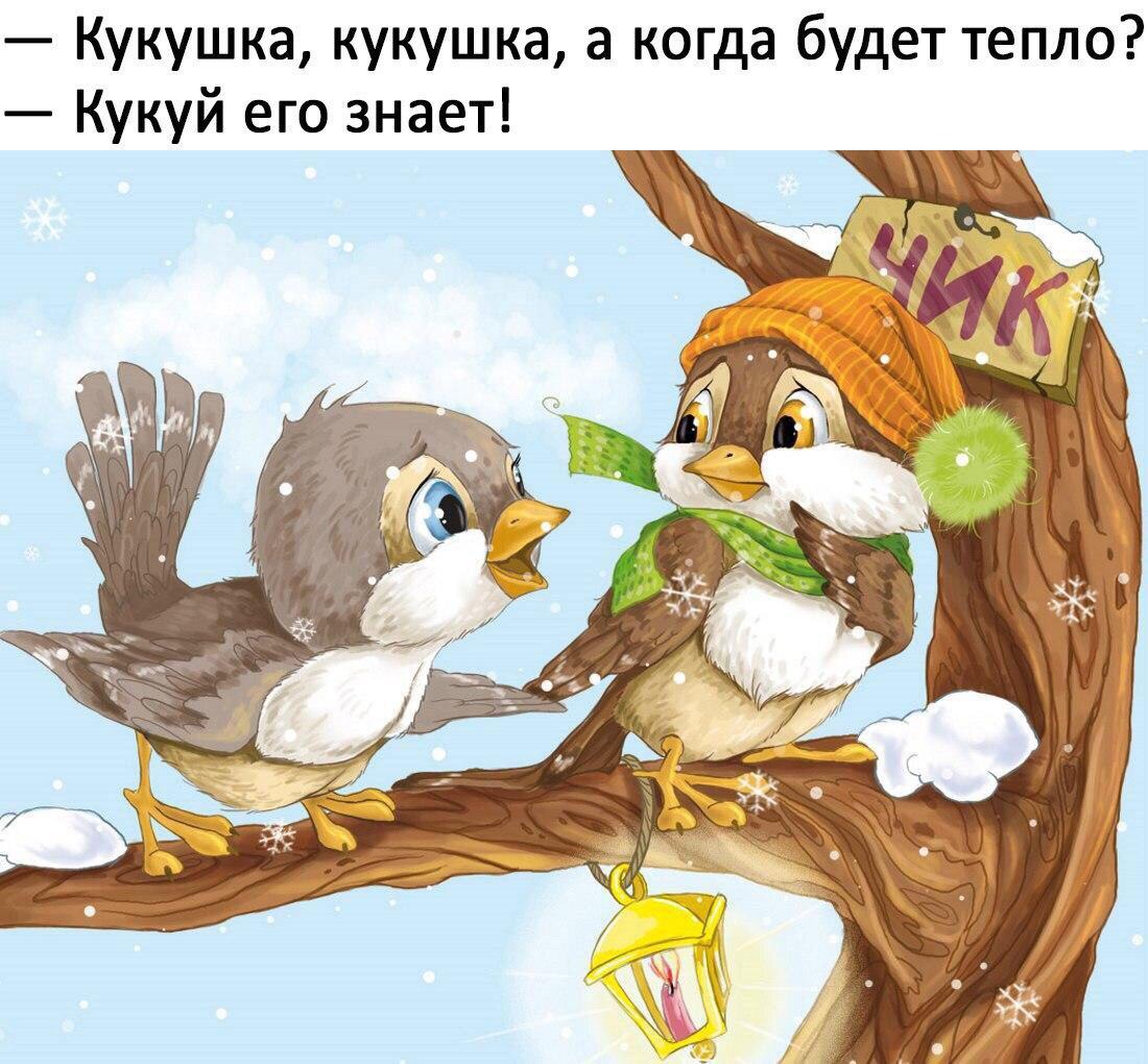 https://pp.userapi.com/c836532/v836532754/434df/2cSuTxeqxU0.jpg