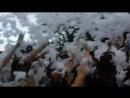 День молодёжи в Невинномысске. Пенная вечеринка ч.5 24.06.2017
