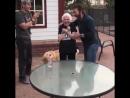 Чак Норрис проиграл бабушке в фигурном подбрасывании бутылки