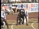 2000 全米陸上競技選手権 男子200m【U.S.OLYMPIC TRIALS】