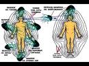 Все тайны о болезнях от Марии Рак Выбор жизнь или смерть Знахари и лже знахари и мн другое