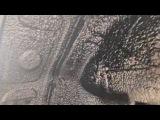 Citroen Picasso (Ситроен Пикассо) жидкие подкрылки - антикор обработка и шумка четырех а...