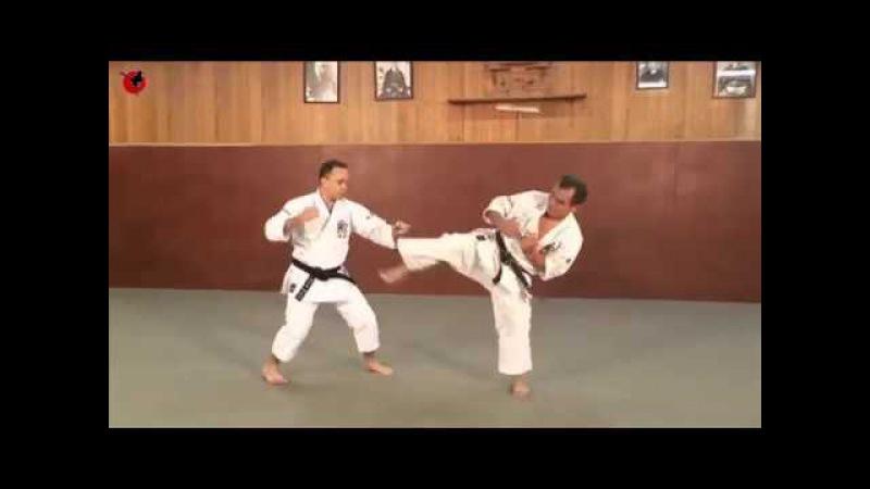 Санбон Кумитэ в Каратэ Годзю-рю Shodokan Goju-Ryu Karate Sanbon Kumite