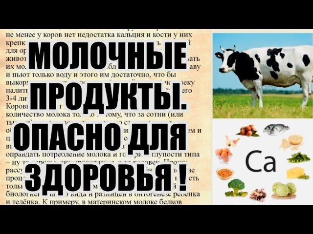 Вред от молока и молочных продуктов. Так ли оно полезно как рекламируют?