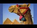 Deutsch lernen: Dialoge, Kapitel 20, Ich fliege nach Ägypten, Learn German