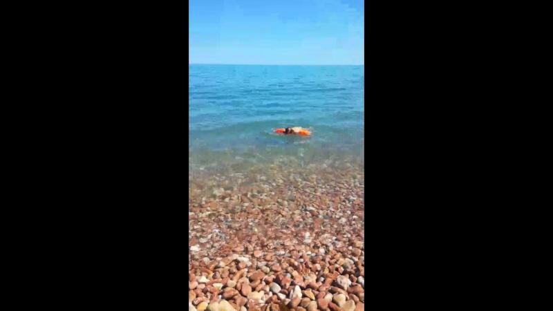 Женя учится плавать