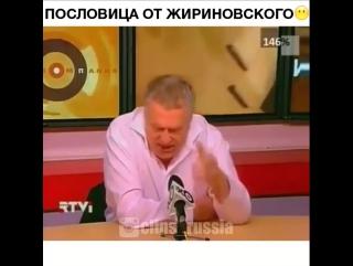Пословица от Жириновского