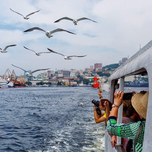 Морские прогулки Владивосток