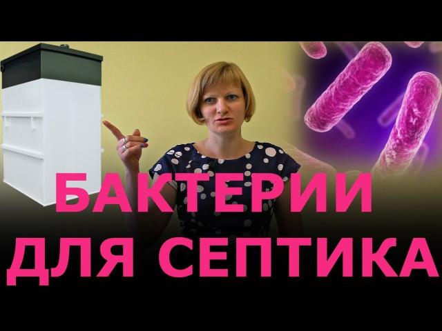 Бактерии для септика. Аэробные и анаэробные бактерии.