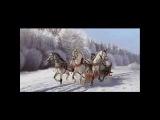 Дворовые песни - Белый снег летит
